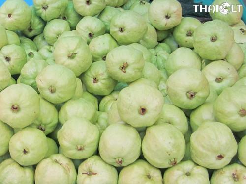 Guava or Fa-Rang